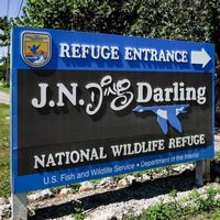Fort Myers Attractions - Ding Darling Sanibel