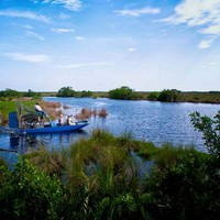Naples Day Trips - Everglades airboat ride