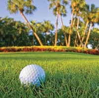 Best Sarasota Public Golf Courses