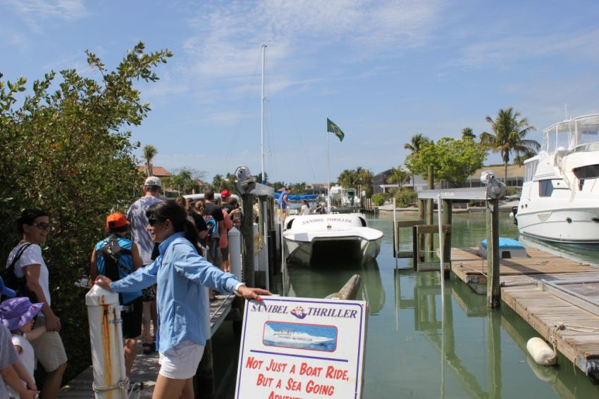 Must Do Sanibel Thriller historical dolphin tour Sanibel Island