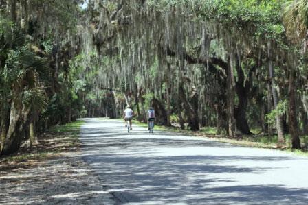 Myakka River State Park biking Sarasota Must Do Visitor Guides