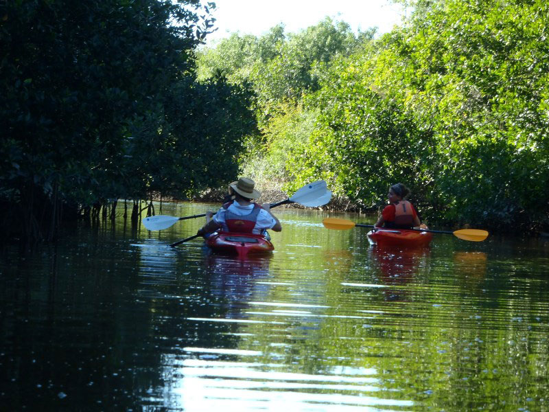 Must Do Naples top 10 activities Naples Kayak Company Rookery Bay guided kayak tour