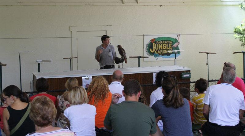 Bird and reptile shows at Sarasota Jungle Gardens
