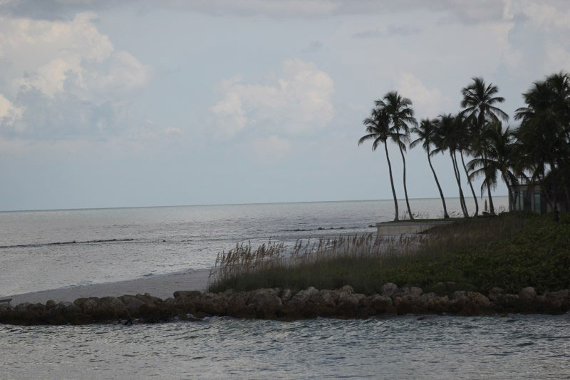 Cruising the Gordon River and the Gulf Of Mexico Naples, Florida aboard Pure Naples M.V. Double Sunshine.