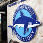 Mote Marine Aquarium in Sarasota is a family fun attraction and great kids activity.