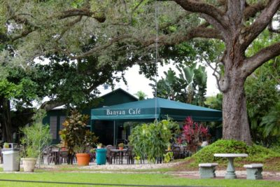 Edison & Ford Winter Estates Banyan Cafe