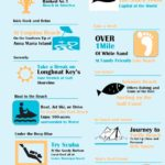 MustDo.com | Must Do Visitor Guides Sarasota Top 10 Beaches Infographic