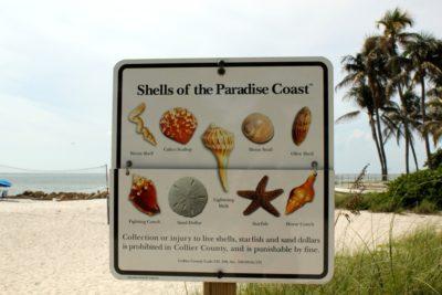 MustDo.com   Naples, Florida beaches, shells, beach combing sign for Shells of the Paradise Coast.