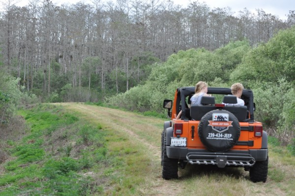 MustDo.com | Observe local wildlife and learn about Old Florida history, ecology and agriculture on an Orange Jeep Tour just outside Naples, Florida