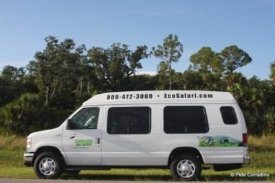 Everglades Day Safari custom tour van Fort Myers, Florida day trips.