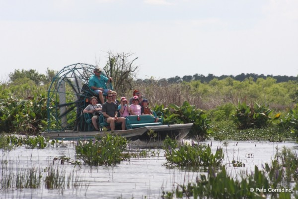 MustDo.com | Take an airboat ride with Everglades Day Safari Fort Myers, Florida.