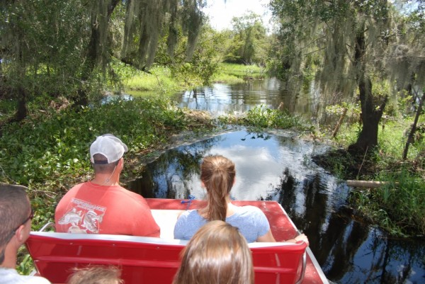 MustDo.com | Airboat ride on the Peace River with Peace River Charters, Sarasota, Florida