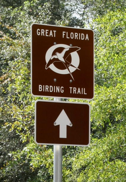MustDo.com | Southwest Florida Birding Tips and locations