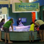 Family fun activities Imaginarium hands-on Science Center touch tank Fort Myers, Florida.