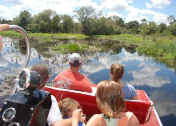 MustDo.com | Peace River airboat tour Sarasota, Florida