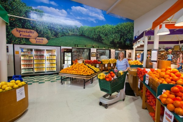 MustDo.com | Sun Harvest Citrus fresh Florida oranges, grapefruits, tangerines, gift baskets, juice Fort Myers Florida.