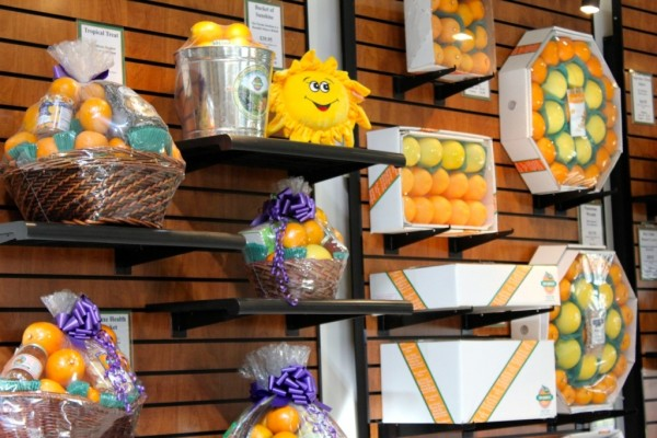 Sun Harvest Citrus gift baskets, Fort Myers, Florida shopping
