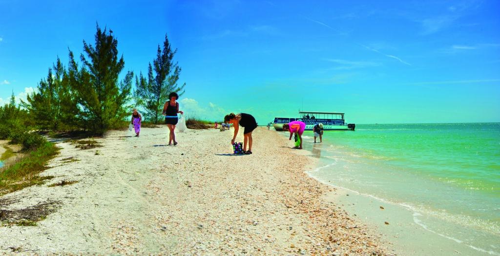 Florida Dolphin Tours Day Tours