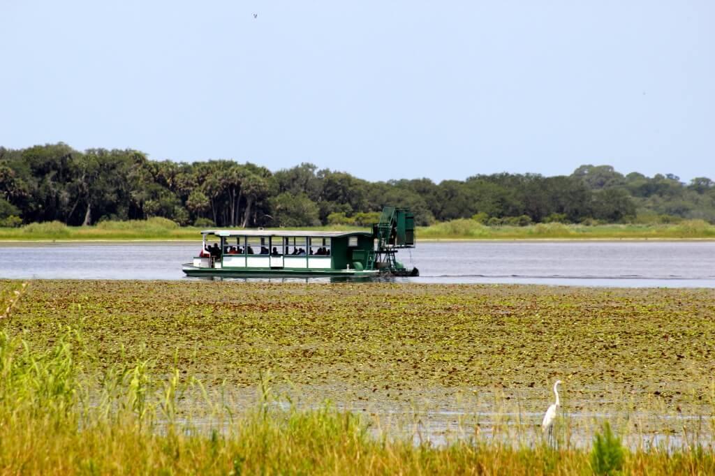 Myakka River State Park Gator Gal airboat wildlife tour Sarasota, Florida | MustDo.com