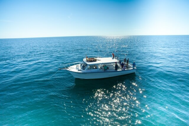 MustDo.com | Must Do Visitor Guides Pure Naples deep sea offshore fishing charters Naples, Florida. #fishing #Naples #vacation