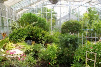 MustDo.com | The Butterfly Estates conservatory Fort Myers, Florida