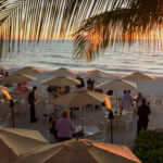 MustDo.com | Must Do Visitor Guides | The Turtle Club Restaurant at Vanderbilt Beach Resort Naples, Florida