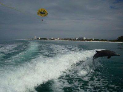 MustDo.com | Sarasota, Florida Must Do Visitor Guide | Siesta Key Watersports Parasailing tours Sarasota, FL