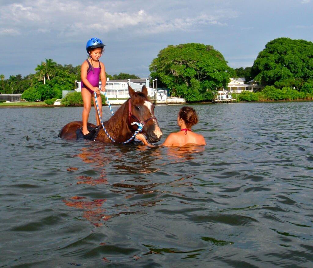 MustDo.com | BeachHorses.com Horse Surfing Sarasota - Bradenton, Florida