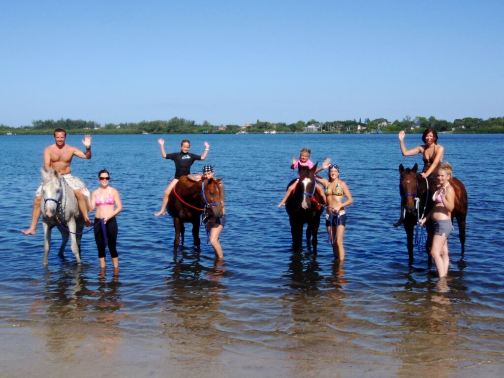 Must Do Vistor Guides Beachhorses Horse Back Riding On The Beach Sarasota