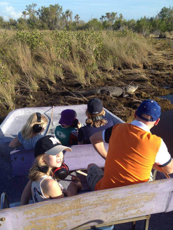 MustDo.com | Must Do Visitor Guides | Alligator Everglades Island Airboat Tours Marco Island, Florida