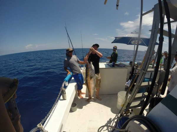 Sea trek family friendly fishing charters on fort myers for Deep sea fishing fort myers beach