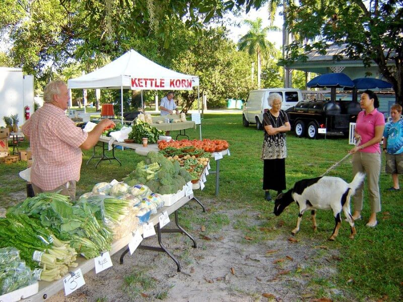 Lee County Alliance for the Arts GreenMarket Ft. Myers, Florida