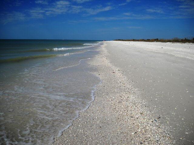 MustDo.com | Sunshine Tours offers shelling tours to the beautiful white sand beach of Keewaydin Island, Florida