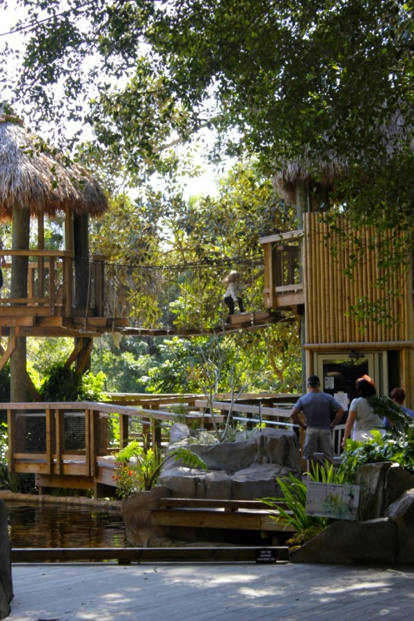 Kids can freely explore and play in the Children's Rainforest Garden at Selby Botanical Gardens Sarasota, Florida