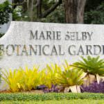 Marie Selby Botanical Gardens Sarasota, Florida USA. Must Do Visitor Guides, MustDo.com