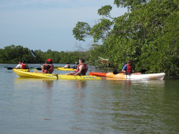 MustDo.com | Naples Kayak Company guided kayak tours Naples & Everglades City, Florida