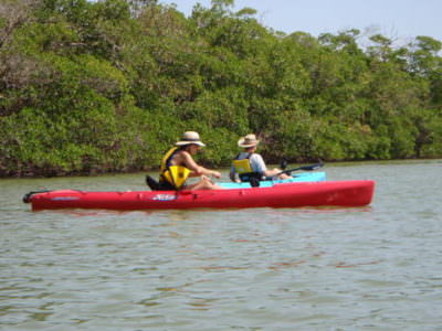 MustDo.com, Naples Kayak Company offers guided tours in Naples, FL