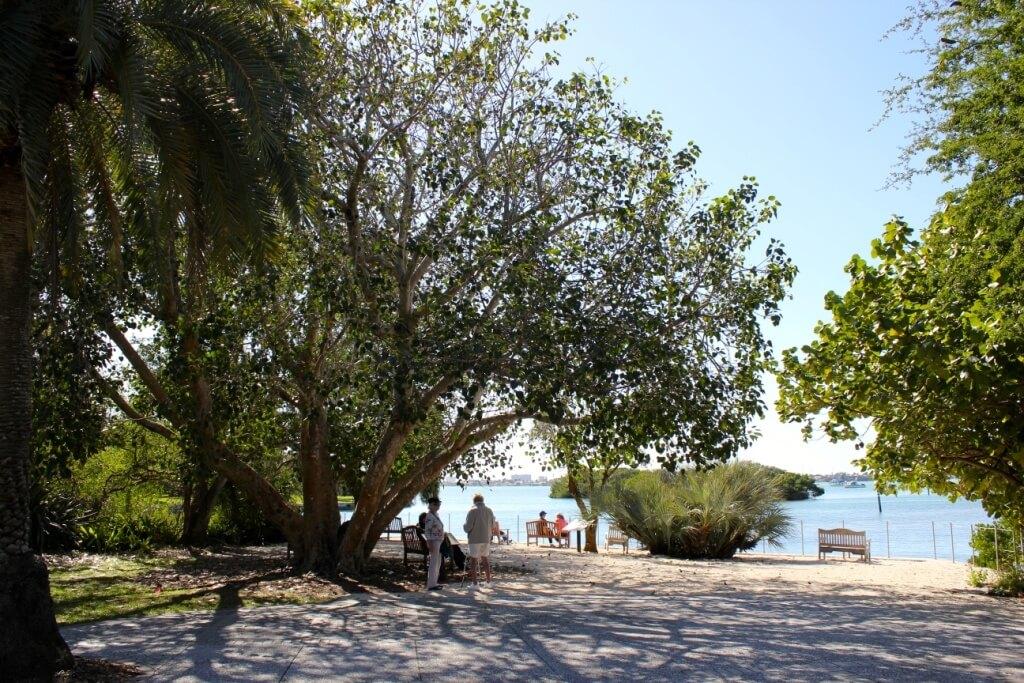 MustDo.com | Relax and take in the view of Sarasota Bayfront Marie Selby Botanical Gardens Sarasota, Florida USA.