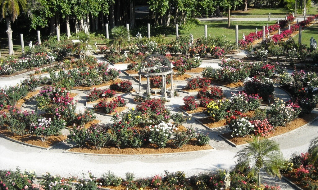 MustDo.com | Rose Garden at The Ringling Museum in Sarasota, Florida