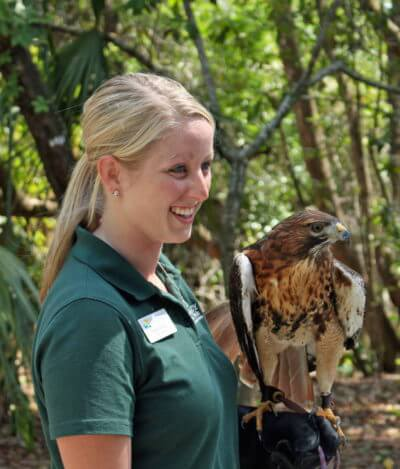 MustDo.com | Conservancy of Southwest Florida Nature Center in Naples, Florida features more than 150 species of local wildlife.