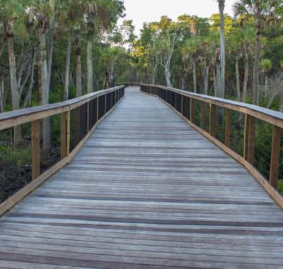 MustDo.com | Gordon River Greenway at Conservancy of Southwest Florida Nature Center in Naples, FL