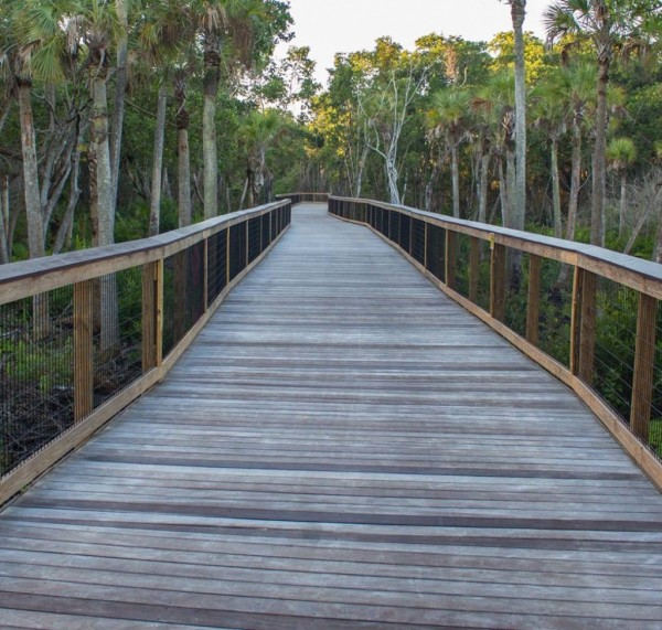 MustDo.com | Gordon River Greenway at Conservancy of Southwest Florida Nature Center in Naples, FL