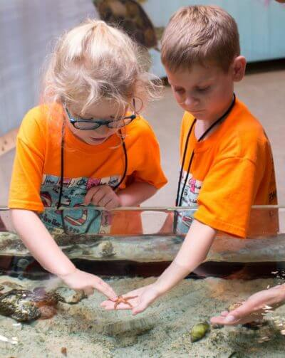 MustDo.com | Kids love the touch tank at the Conservancy of Southwest Florida Nature Center in Naples, FL