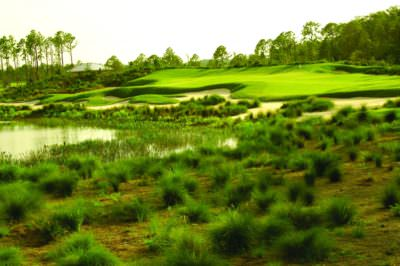 MustDo.com | Old Corkscrew championship golf course Fort Myers, Florida