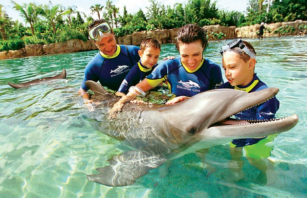 MustDo.com | Older kids (and parents) can fulfill their dream of swimming with dolphins at Discovery Cove in Orlando, Florida.