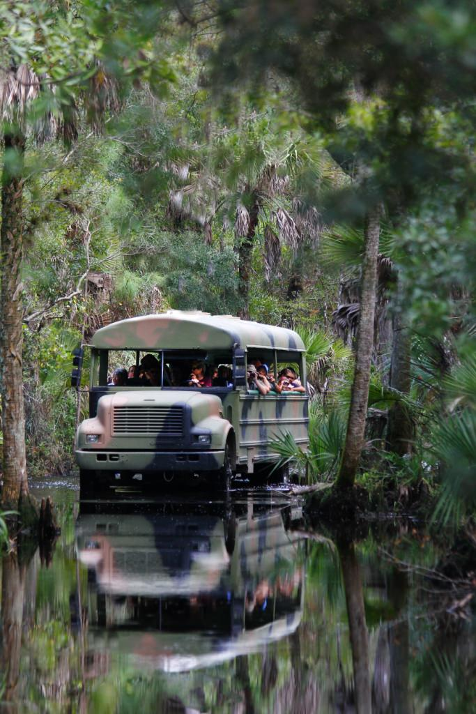 Babcock Wilderness Adventures Tour Must Do Visitor Guides