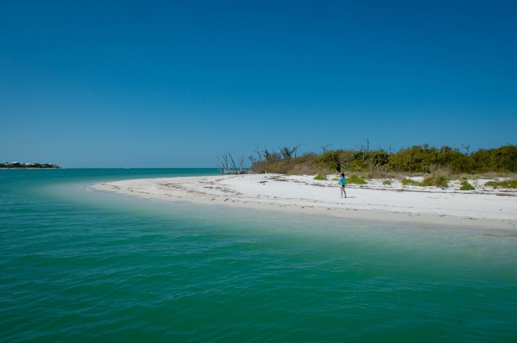 MustDo.com | Beautiful white sand beach on Cayo Costa State Park which is a barrier island only accessible by boat from nearby Captiva Island, Punta Gorda, Pine Island and Boca Grande, Florida.