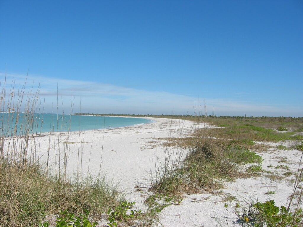 MustDo.com | Beautiful white sand beach on Cayo Costa State Park on the west coast of Florida - near Fort Myers is only accessible by tour or ferry boat.