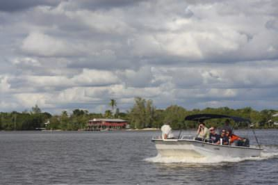 Everglades Day Safari Smallwood's Boat Tour Everglades City, FL