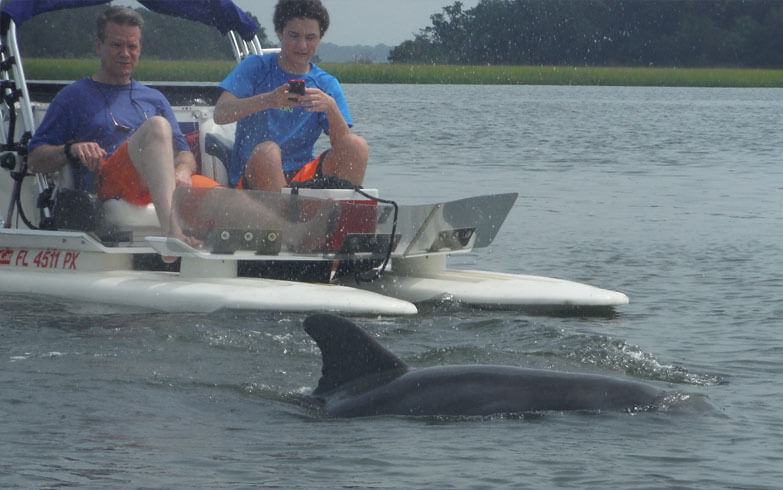 MustDo.com | See dolphins and other wildlife on a Backwater Adventure nature tour Marco Island, FL